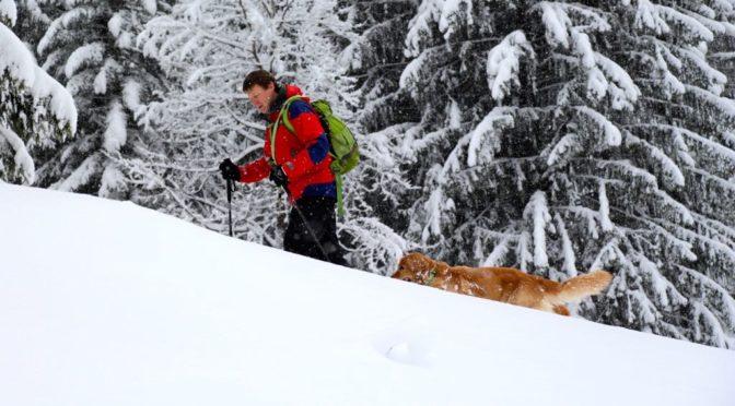 Trotz tiefem Winter – Querida im 2. Frühling