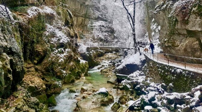 Unser Winter in Biel